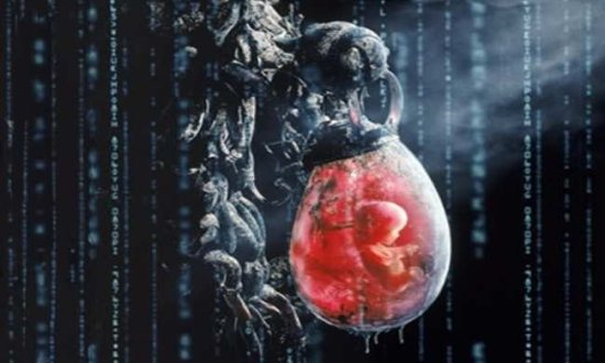Embryo in The Matrix. Source: http://www.cyberpunkreview.com/movie/essays/understanding-the-matrix-trilogy-from-a-man-machine-interface-perspective/