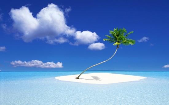 Palm Tree Island.