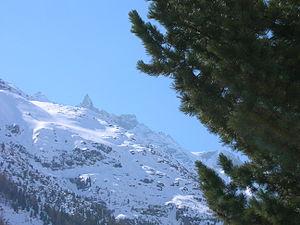 Aiguille de la Tsa 3668m from La Gouille