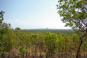 Charles Darwin National Park, Northern Territory