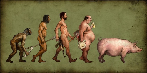 Evolution of Man. Source: http://darwinstable.wordpress.com/2008/09/30/the-paleo-diet/