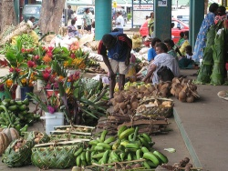 Port Vila marketplace. Source: http://www.flickr.com/photos/kirrilyrobert/1582734791/