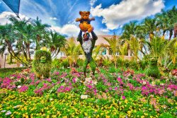 The Circle of Life Topiary at Epcot. Source: http://www.flickr.com/photos/sammers05/4709515015/