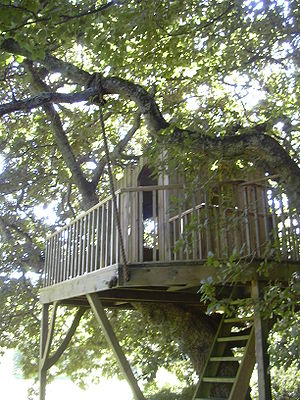 Tree House, in the garden of Bonython Manor.