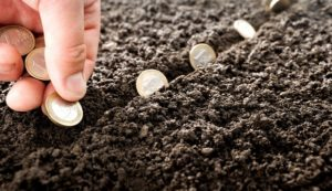 planting seeds of money to grow investing