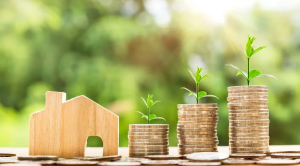 grow money with more savings