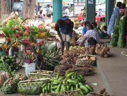 Port Vila marketplace. Source: http://www.flickr.com/photos/kirrilyrobert/1582734791/