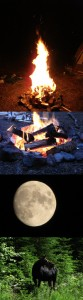 Camping experience; fires, the moon, and a moose.